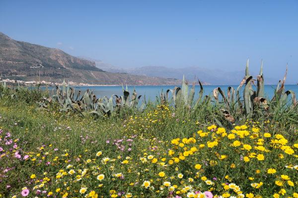 Blumen und Meer zur Stressbewältigung